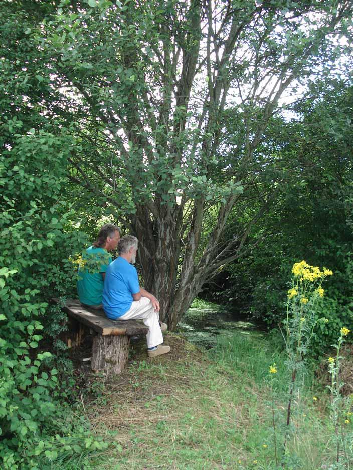 Lotussy Centre de Ressourcement. Een goed gesprek voeren in de mooie natuur op Lotussy.